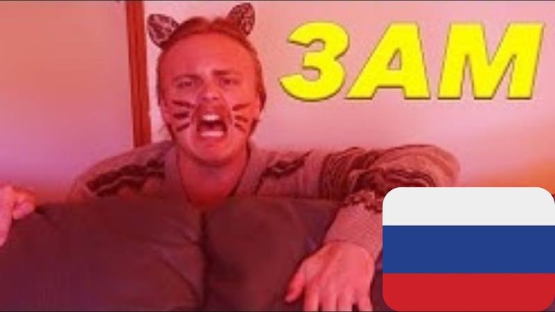 Каждый кот просто обязан делать это Gus Johnson на русском