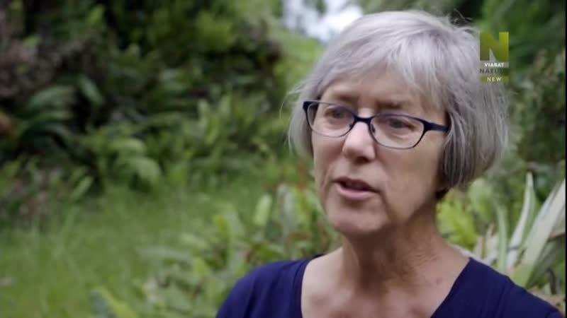 Вулканы Новой Зеландии / Volcanic New Zealand. Фильм 2 (2018)