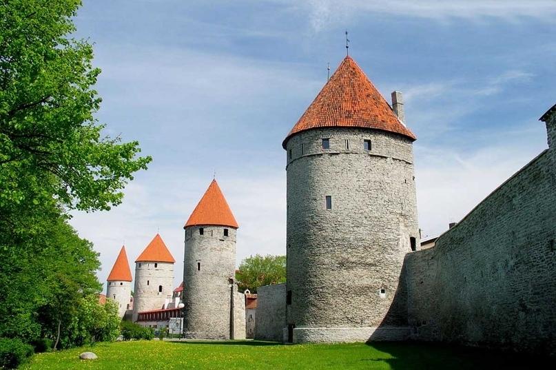 Страны мира — Эстония, изображение №2
