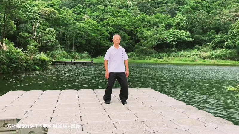 方祖豪2019 - 鄭子太極拳之打不完的攬雀尾單鞭