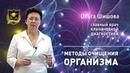 ЛАБИРИНТ | Методы очищения ОРГАНИЗМА | Ольга Шишова