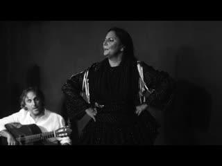 Veranos flamencos 2019 | primera semana