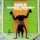 Diplo - Express Yourself - Мой микс