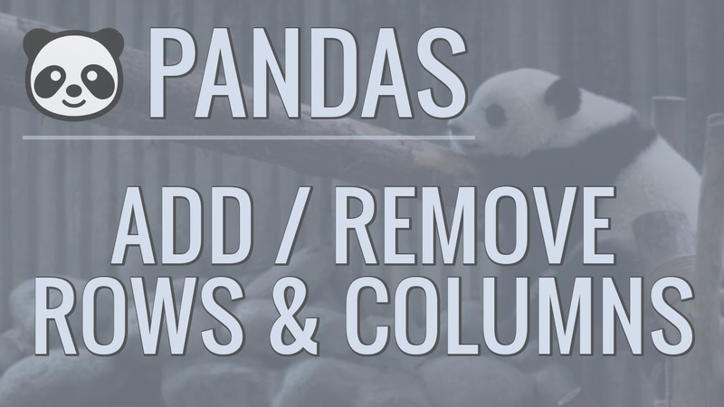 Python Pandas Tutorial Part 6 Add Remove Rows and Columns From DataFrames