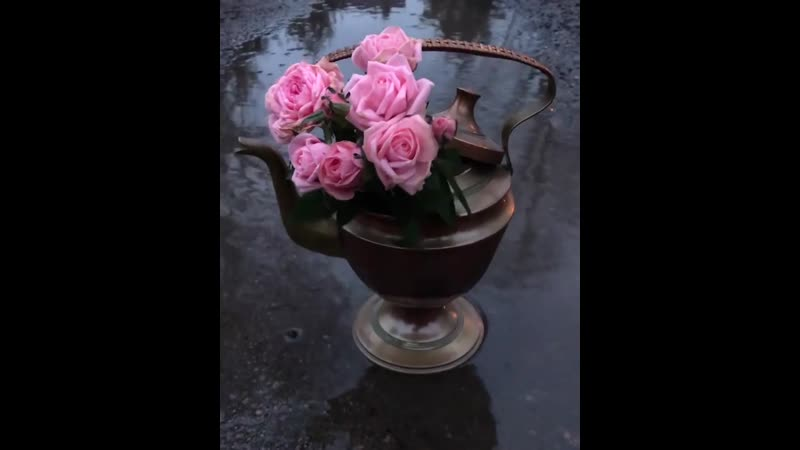 Розы Весна