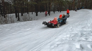 Прогулки по Кирсу, зима в Заречном парке