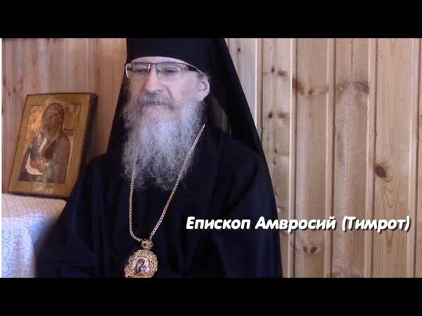 Епископ Амвросий Тимрот реакция Православной Церкви на короновирус