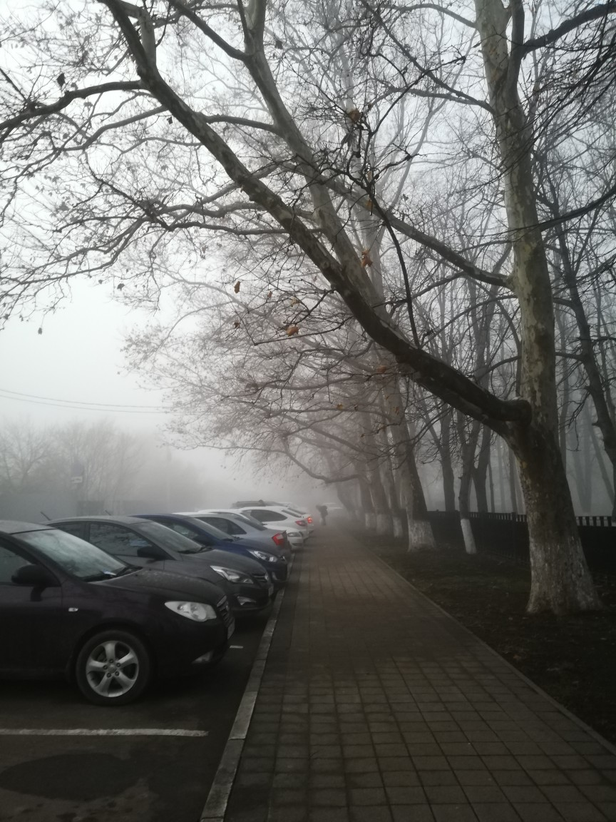 Шустро туман накрыл станицу.