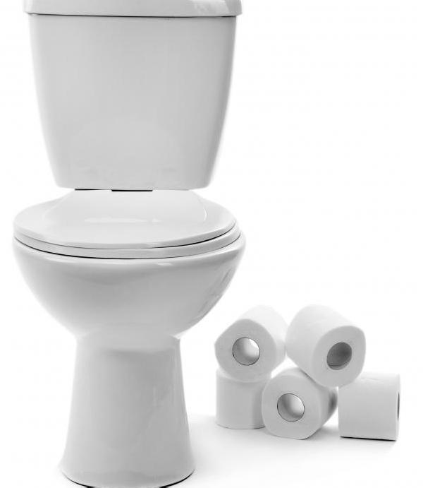Туалет - это водопроводная труба для человеческих отходов.