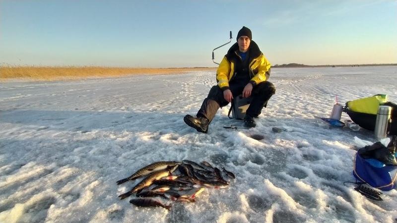 Закрываем сезон зимней рыбалки в устье Свири д Загубье Лиман