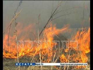 Горящий сезон - из-за первого пала травы в Борском районе загорелась свалка