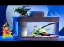 АКВАРИУМ XIAOMI GEOMETRY FISH TANK PRO 10L 🚀 КОНКУРС ПРИЗ MI BAND 5 🚀 №630