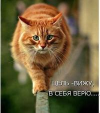 фото из альбома Елены Баженовой №2