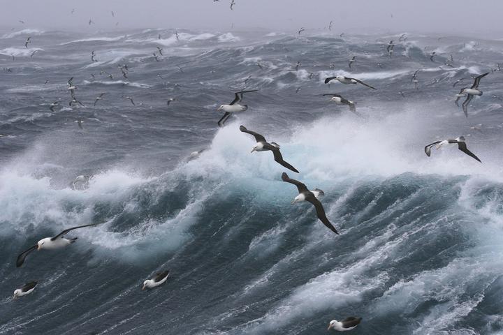 Cеверный Ледовитый океан может перестать замерзать в сентябре уже к 2055 году