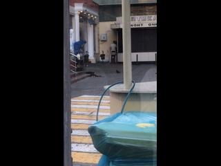 Видео от Подслушано Сочи
