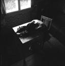 Личный фотоальбом Саши Холод