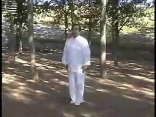 Wángshǎowǔ xiānshēng yǎnliàn de yī tào dà fān zi quán——chuō jiǎo fān
