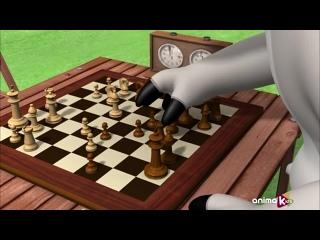 CLG - Bernard Bear - 127 - Chess