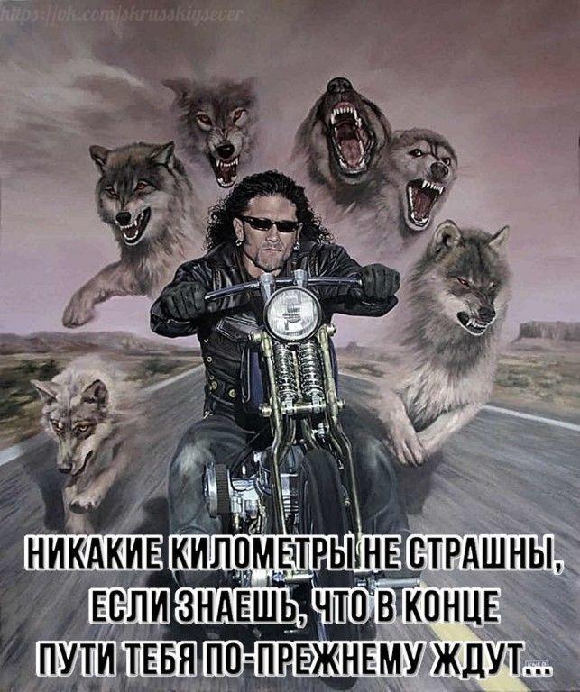 Александр, 37, Vologda