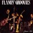 Flamin groovies