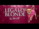 Legally Blonde West-End Live 2010 год