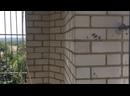 Видео от Свято-Николаевский Храм УПЦ г. Константиновка