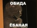Фотоальбом Анюточки Завертень