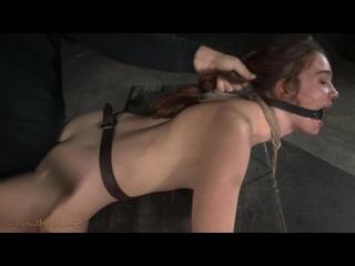 SexuallyBroken - Jodi Taylor