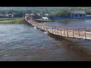 Видео от REBORN