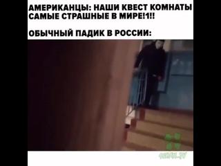 обычные русские падики