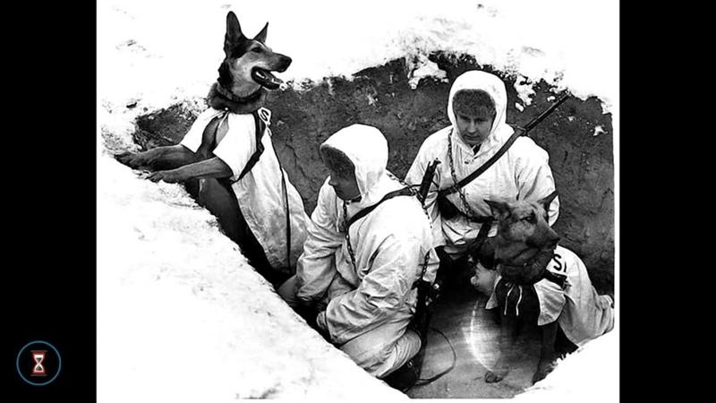 10 Мифы и легенды Великой Отечественной войны
