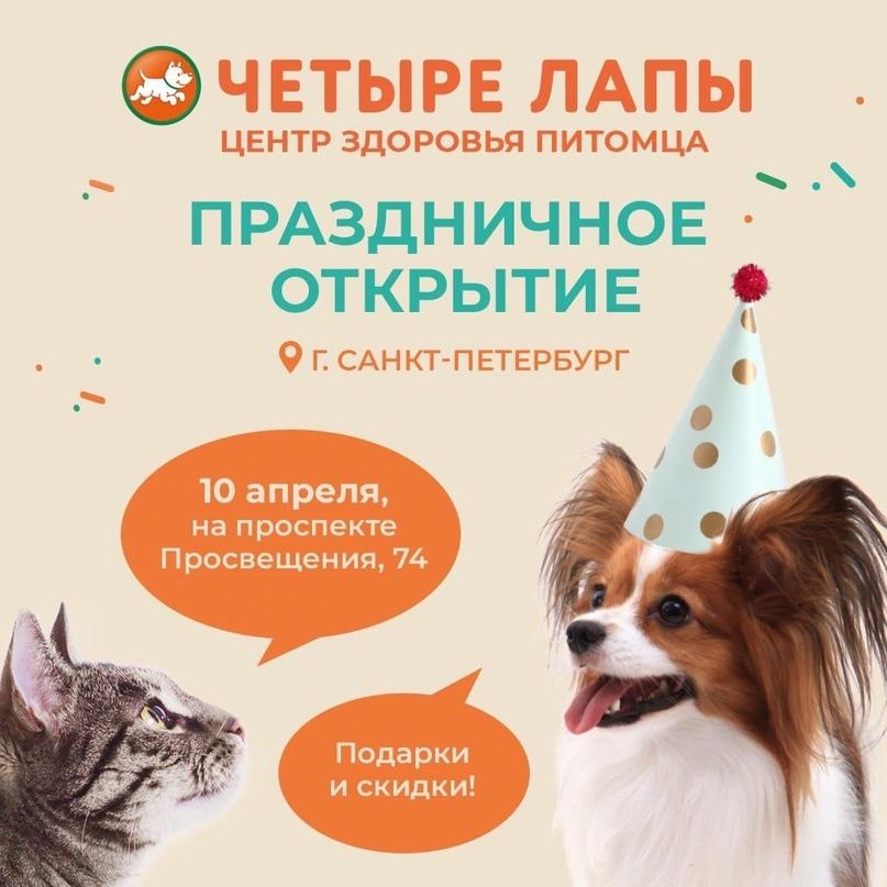10 апреля в Санкт-Петербурге состоится праздничное открытие зооцентра «Четыре Ла...