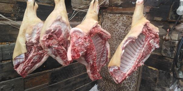 Продам мясо, свинина домашняя.📞 +7 (961) 766-85-03...