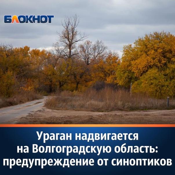 В среду, 20 октября, стало известно, что на Волгог...