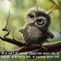Фотография Максима Крылова