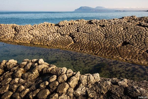 Посмотрите на эту красоту: мыс Столбчатый, Курильские острова