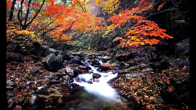 An autumn tale is a charming touching melody Very beautiful music music for the soul