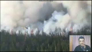 Поджог лесов с вертолёта.Те,кто это делает-на другой планете жить собираются???