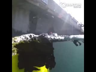 Мусорный бак в воде vecjhysq ,fr d djlt