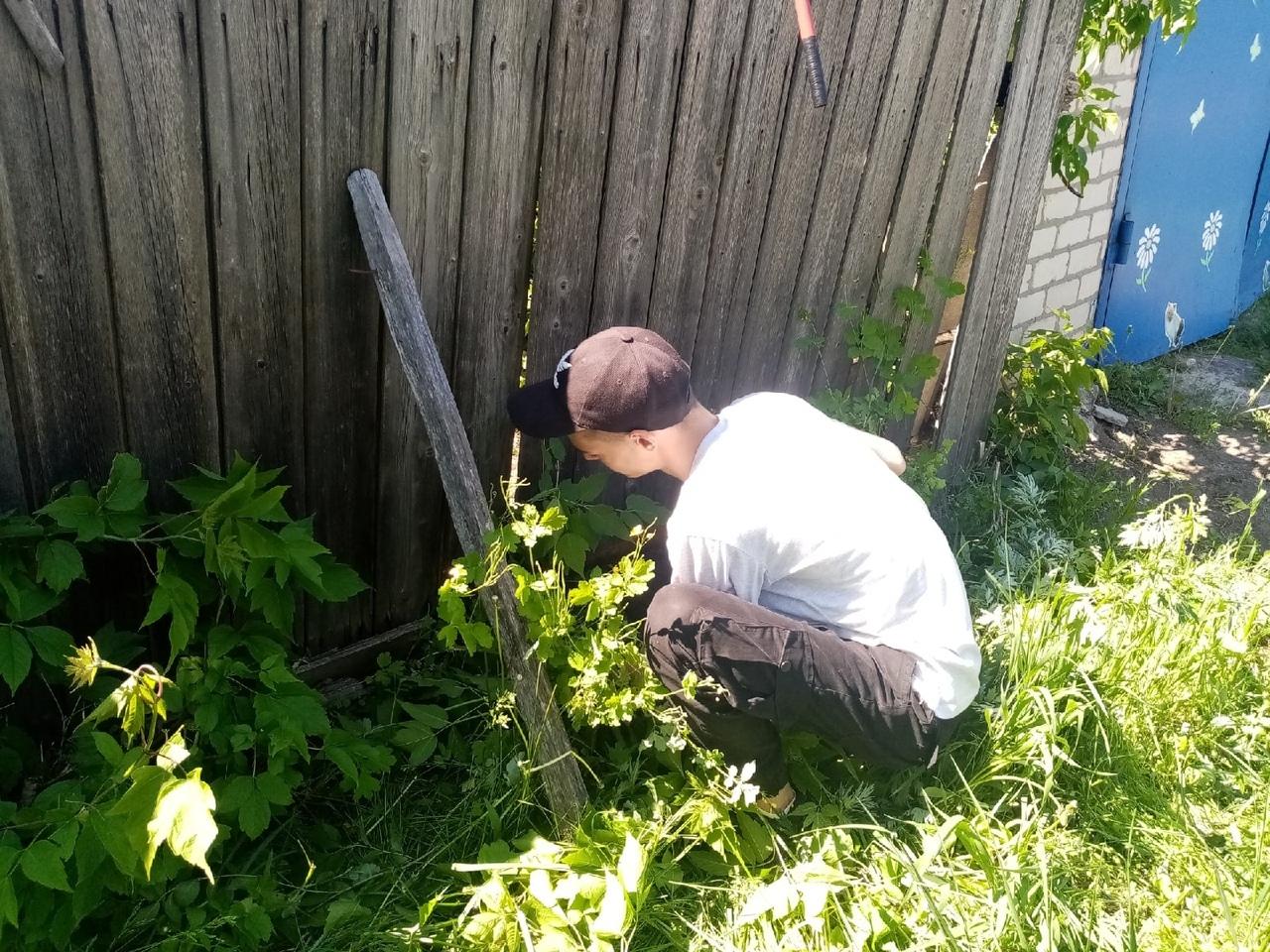 В Петровске продолжается добровольческая акция «Дом без одиночества»