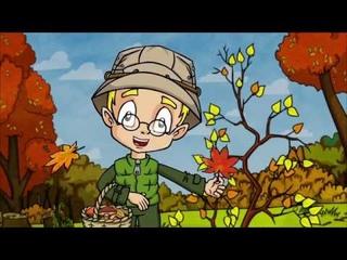 NEW!!! В ЛЕСУ - Сборник познавательных мультфильмов Профессора Почемушкина о природе :)