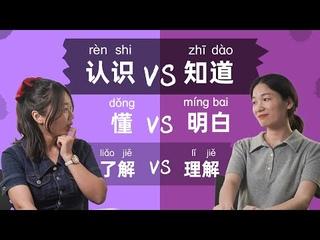Chinese Grammar: 认识 VS 知道, 懂 VS 明白, 了解 VS 理解  - Learn Mandarin Chinese