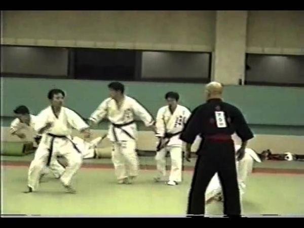 7 7 The fact of Yanagi Ryuken Daitoryu Aikido JAPAN VIDEO judo karate youtube