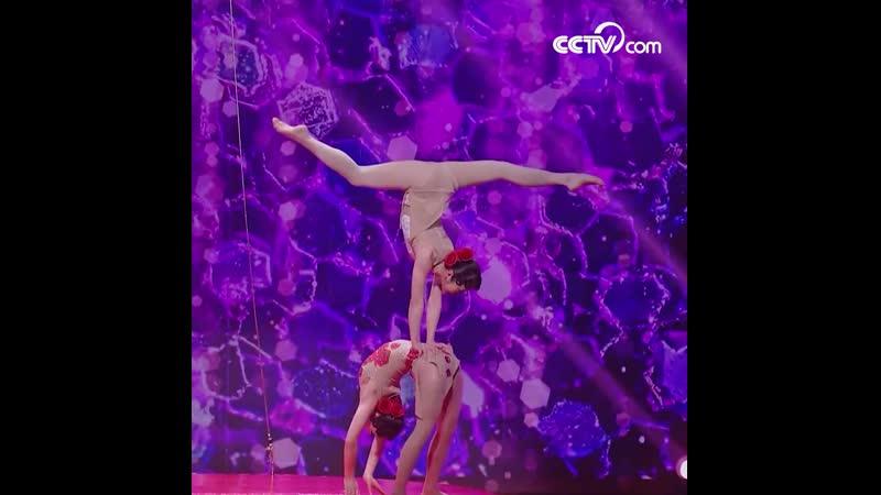 Акробатическое шоу «Цветущая молодость»