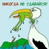 Надежда Курашова