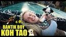 BANTIK BOY - ПОД ВОДОЙ/KOH TAO/DIVING/МЕНЯ ЛЮБЯТ СОБАКИ