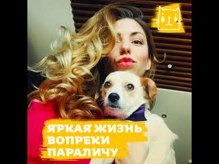 Москвичка приютила собаку, которую переехала машина