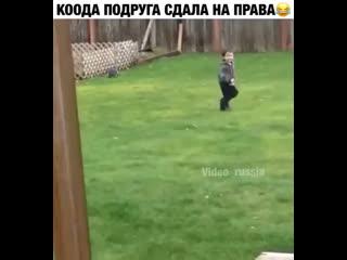 картинка когда подруга сдала на права зонт