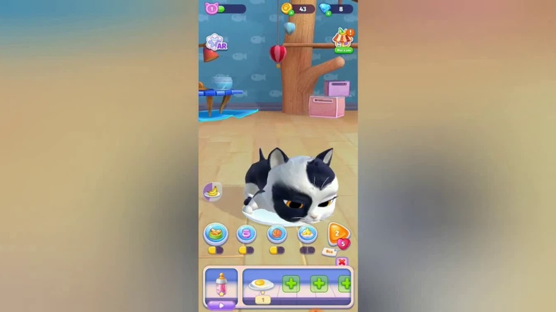 My Cat Pusy Pet Game
