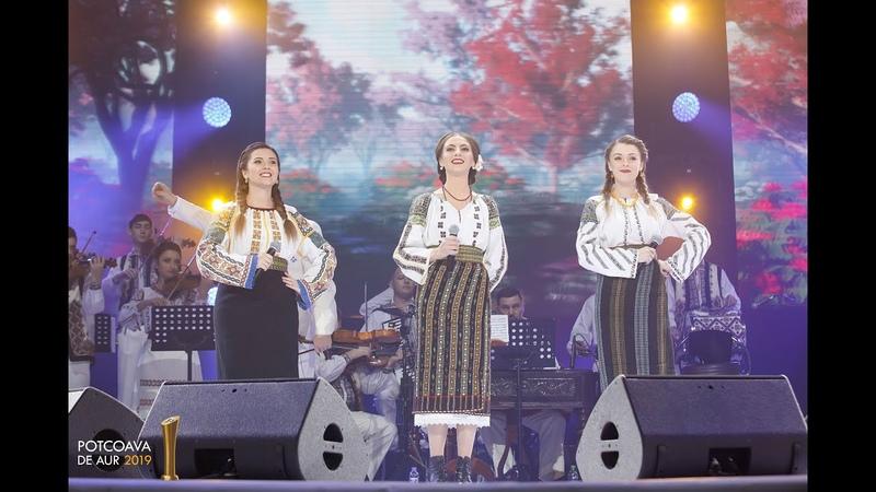 Fetele din Botoșani Dragostea îi taină mare potcoavadeaur 2019